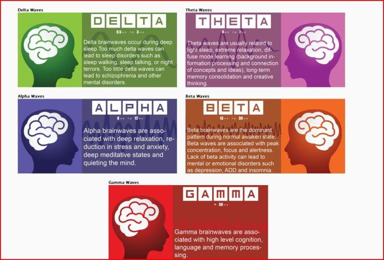 brain waves blog